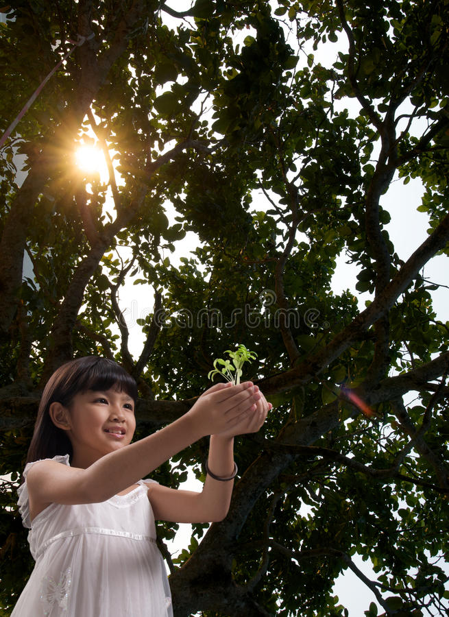 森林女孩一点阳光 库存照片