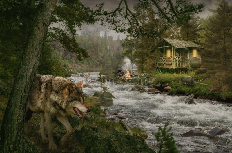 森林小屋快的小河 库存图片