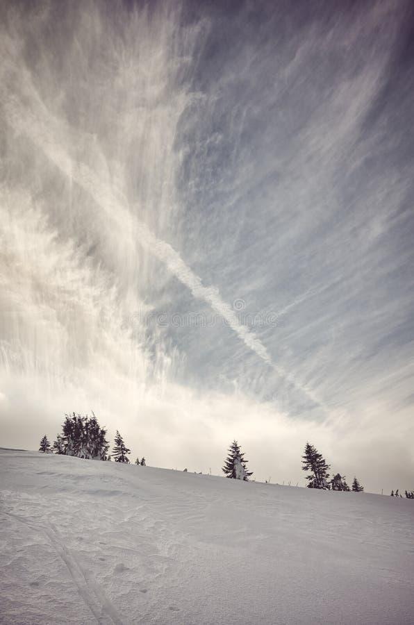 森林山阴云密布风景天空多雪的冬天 免版税库存照片