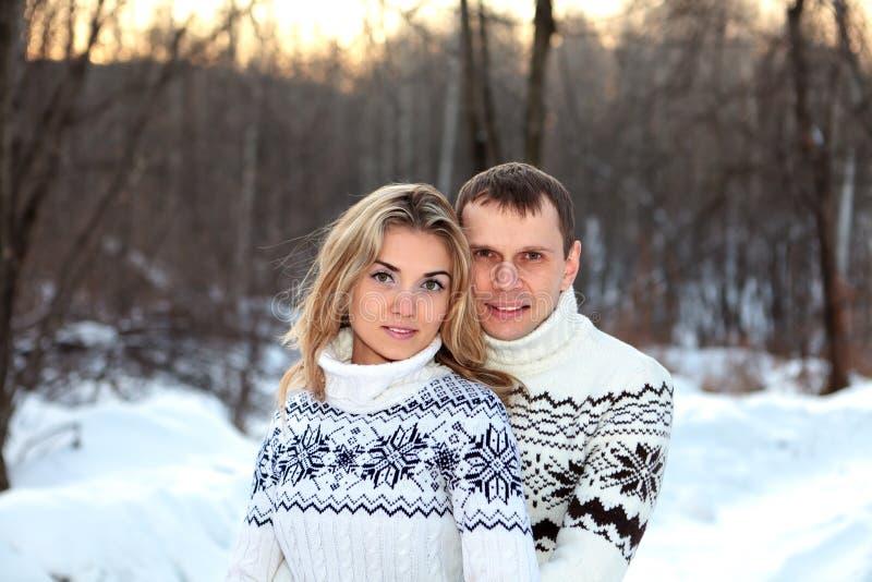 森林愉快的对冬天 免版税库存照片