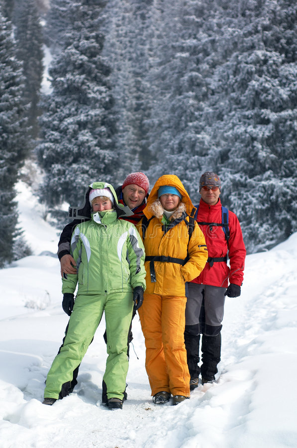 森林朋友愉快的冬天 库存照片