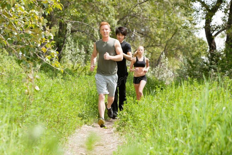 森林朋友跑步 库存图片