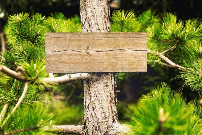 森林标志 库存图片