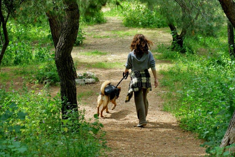 森林步行的女孩与她心爱的狗 免版税库存照片