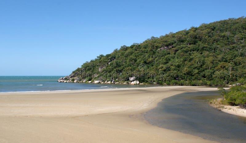 森林沙子和潮汐水 库存照片