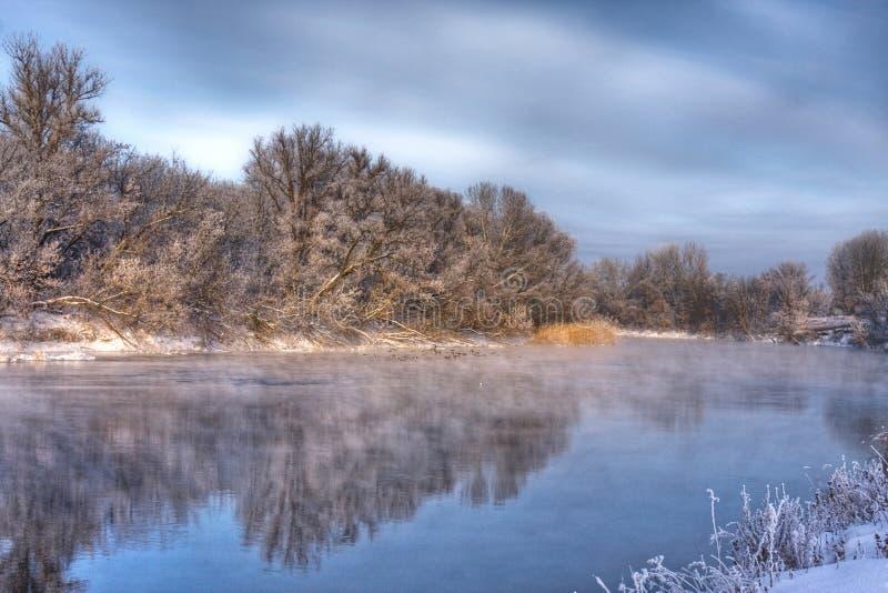 森林河冬天 图库摄影
