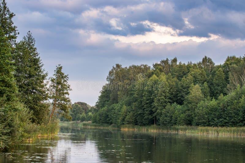 森林河反射夏天风景 森林河反射在秋天 免版税库存图片