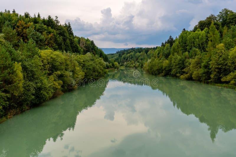 森林河反射风景 秋天森林河水全景 森林河反射在秋天 免版税库存图片