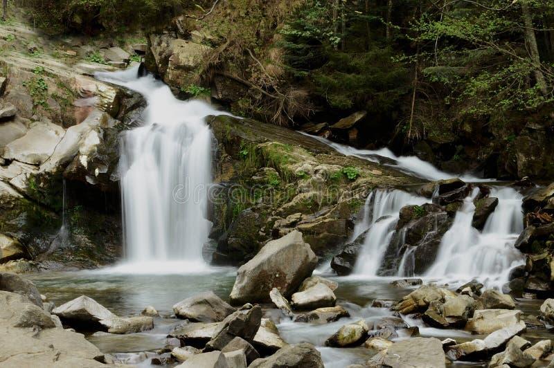 森林流动的瀑布上流在喀尔巴汗的山有噪声流程的下来在森林背景  免版税库存图片