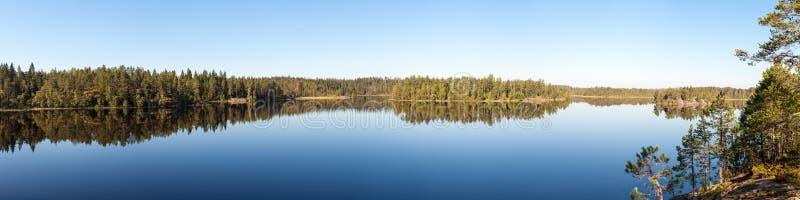 森林湖全景  免版税库存图片