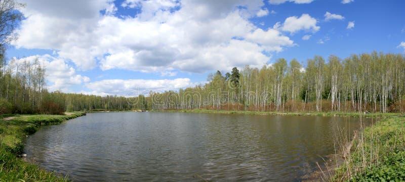森林湖全景 库存照片