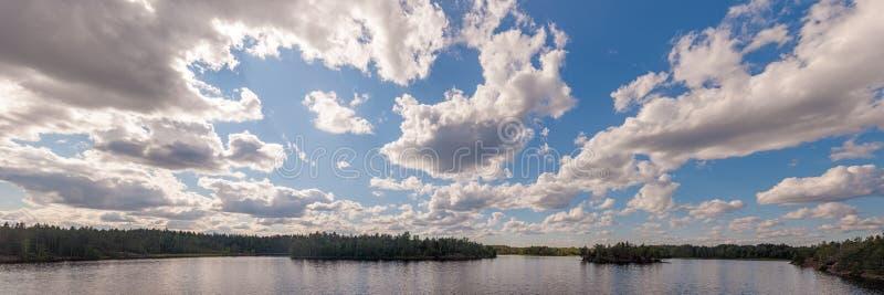 森林湖的全景 免版税库存照片