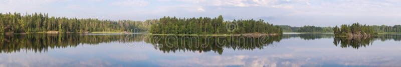 森林湖的全景 免版税库存图片