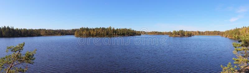 森林湖的全景 图库摄影