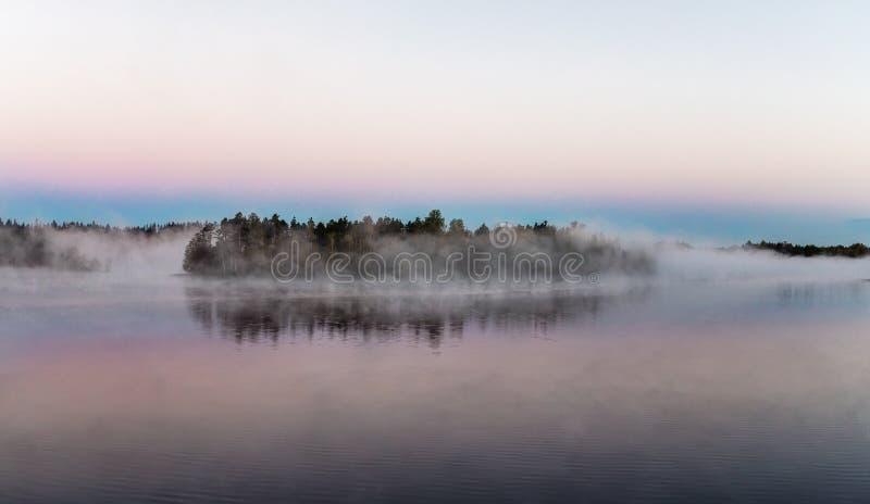 森林湖的海岛 免版税库存图片