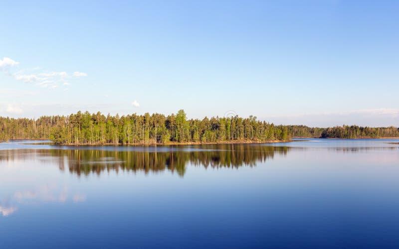 森林湖的海岛 库存图片