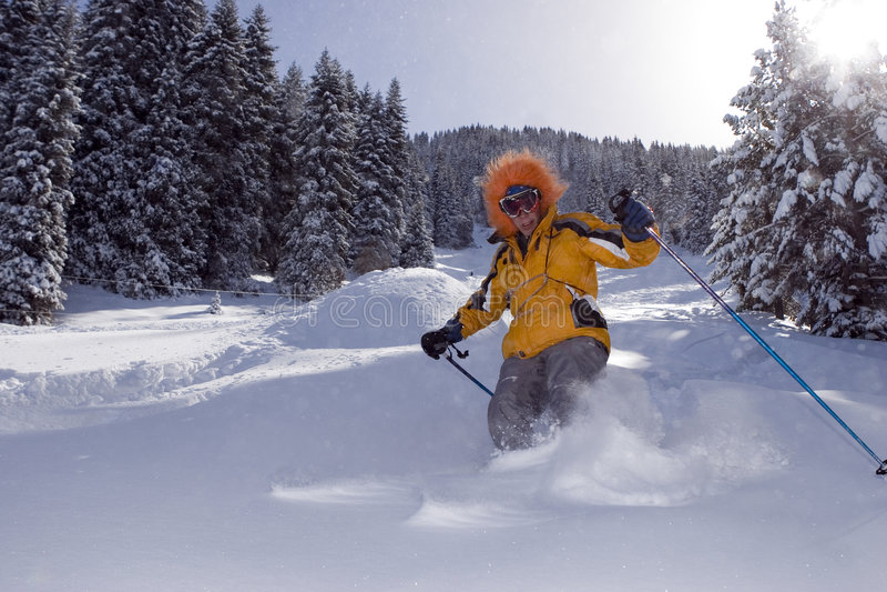 森林滑雪者雪冬天 免版税库存图片