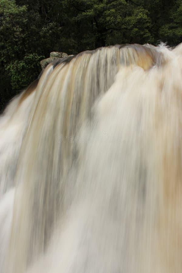 森林瀑布垂直的柔滑的风景自然势利的人小河维多利亚澳大利亚 图库摄影