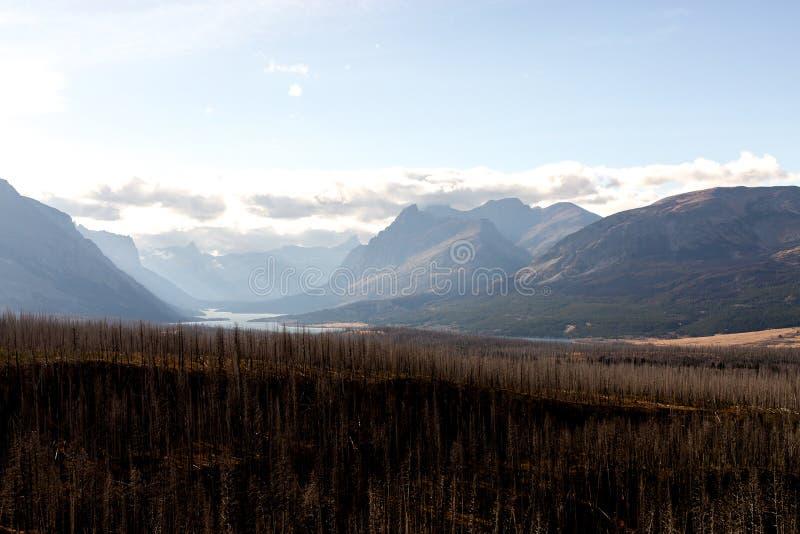 森林火灾和山被烧焦的遗骸  免版税库存照片