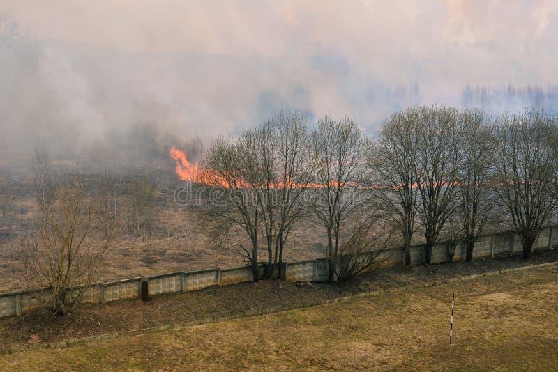 燃烧的木头 森林火灾干草、烟和明亮的火焰 对房子的接近的火 ?? 库存图片