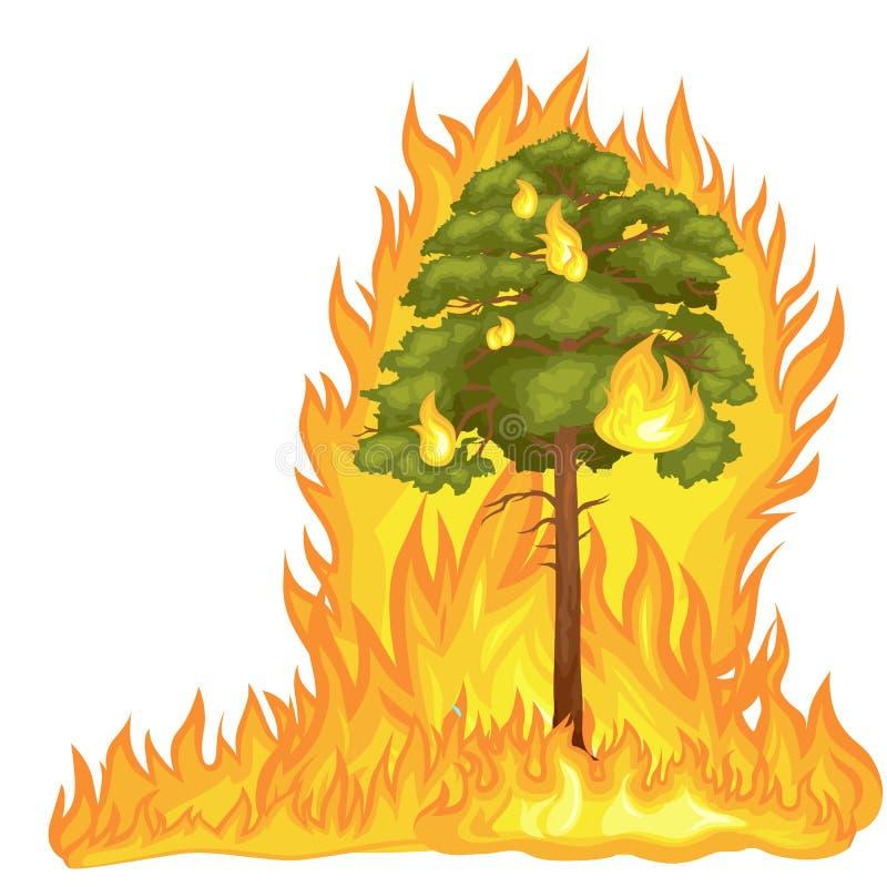 森林火灾 皇族释放例证