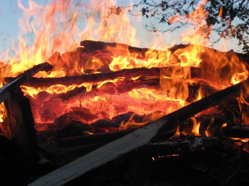 森林火灾8 免版税库存图片