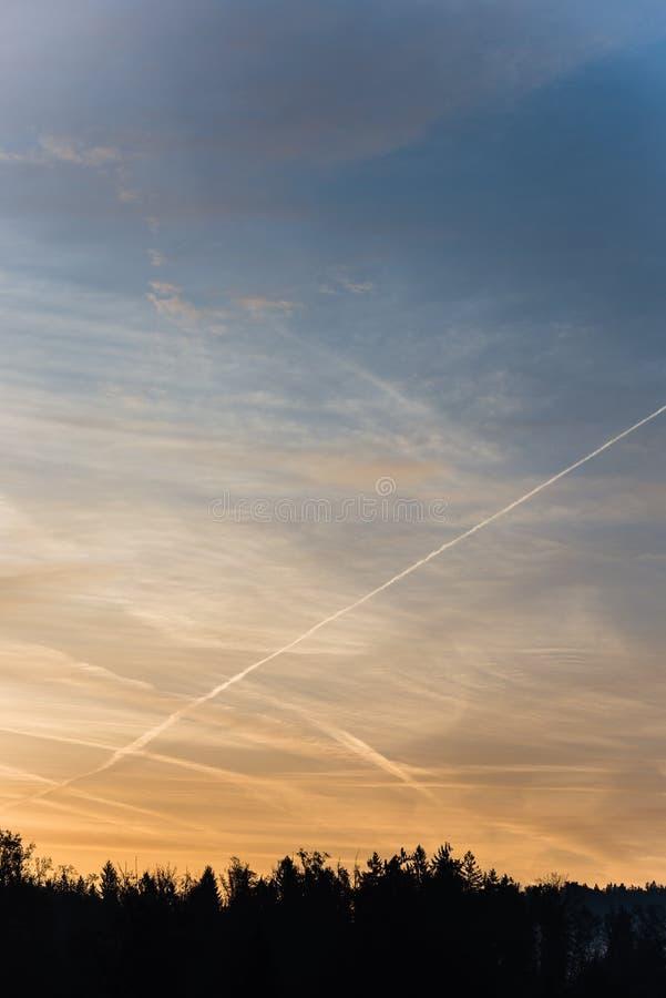 森林现出轮廓反对在五颜六色的早晨天空的转换轨迹 图库摄影