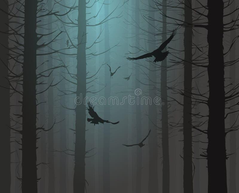森林的剪影有飞鸟的 向量例证