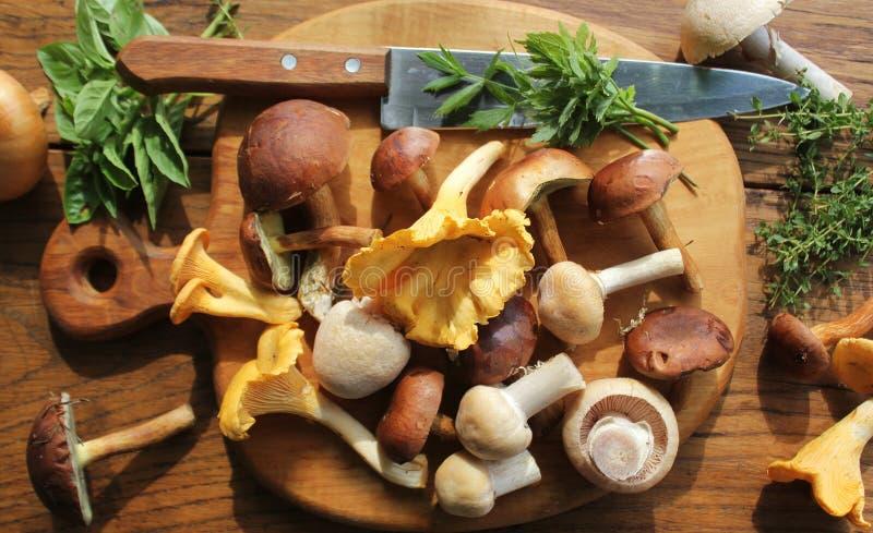 森林的混合在老木桌的切板采蘑菇 图库摄影