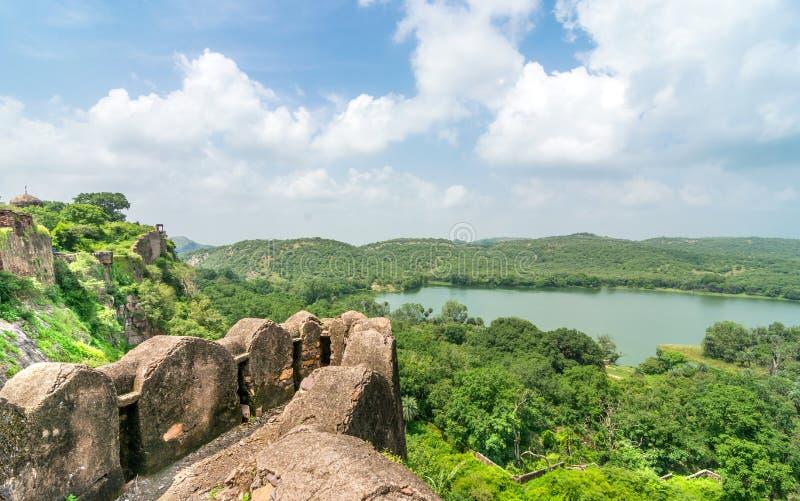 森林看法从堡垒的 免版税库存图片
