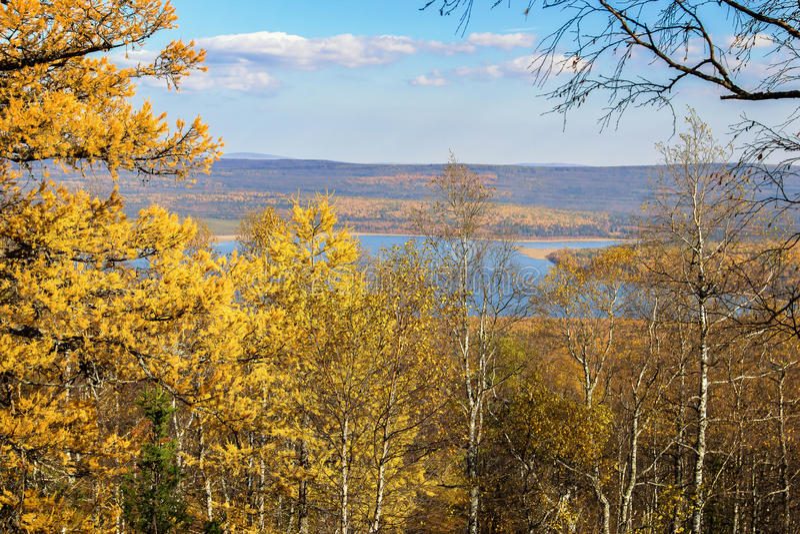 森林秋天风景在国家公园Zyuratkul,俄罗斯 库存照片