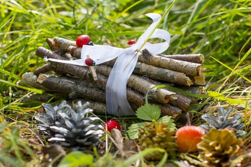 森林童话、蘑菇爆沸和森林木柴 免版税库存图片