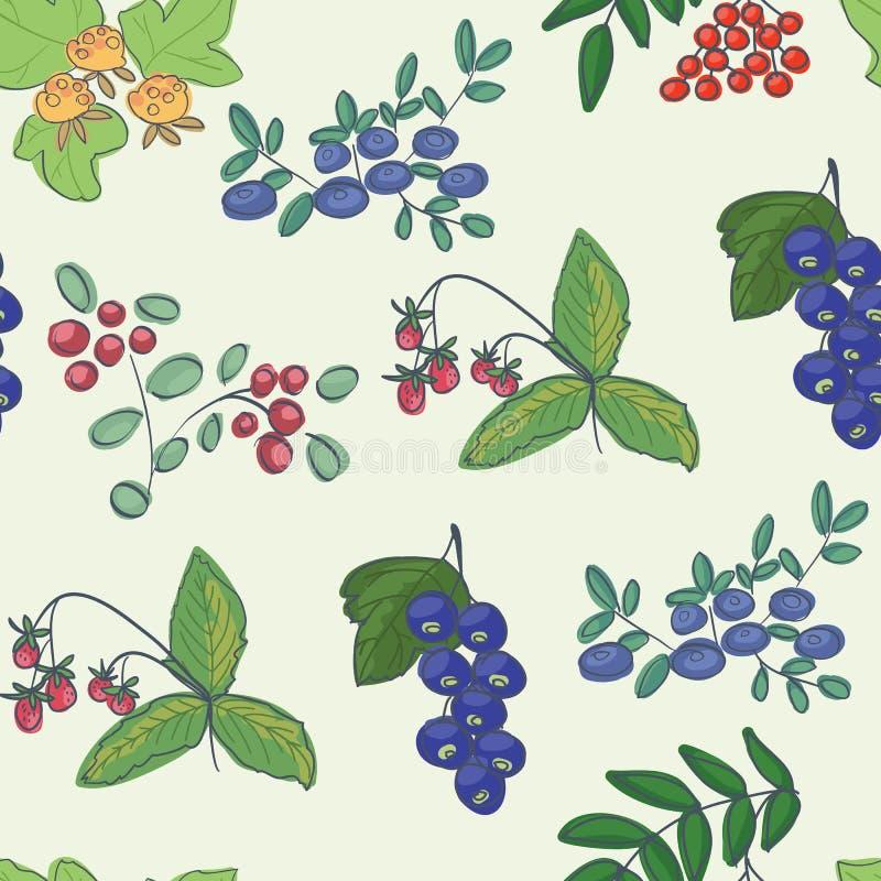 森林莓果-背景 库存照片