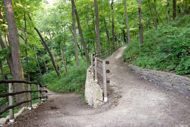 森林足迹,路由罗伯特Fr移动了 库存图片