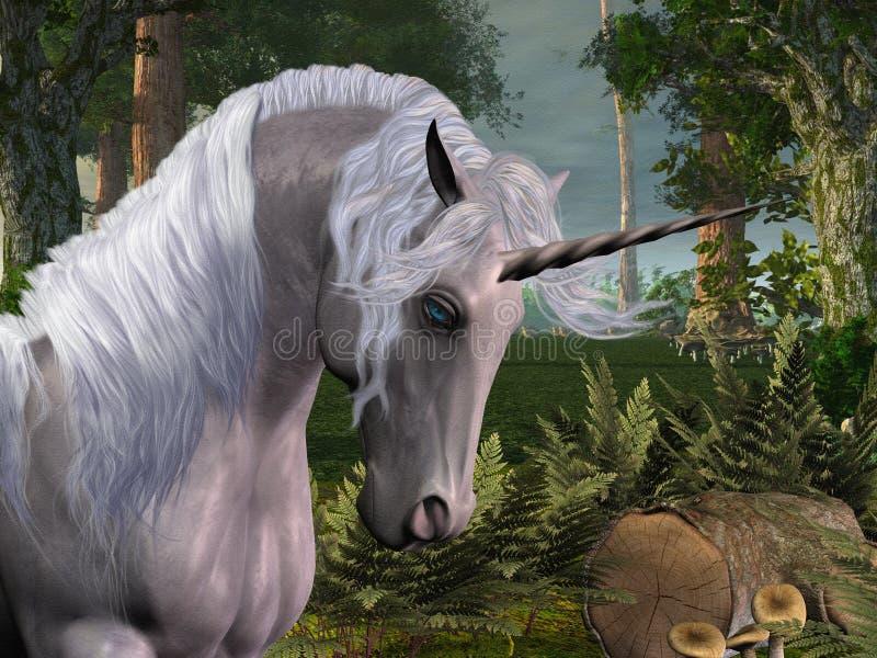 森林魔术 库存例证