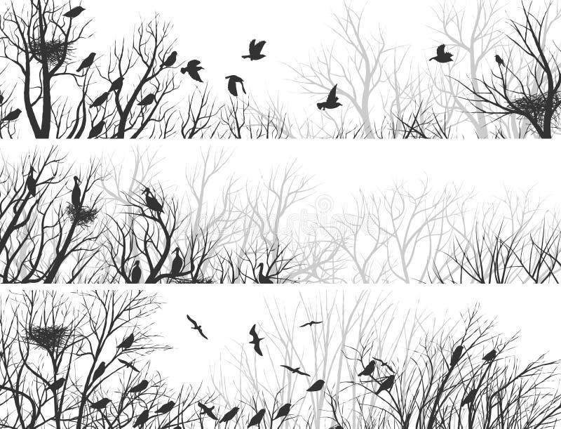 森林水平的横幅有树枝和鸟的 向量例证
