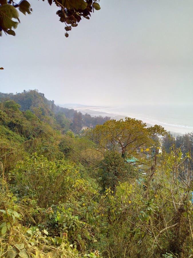 森林sundarban印度圣马丁小山 免版税库存图片