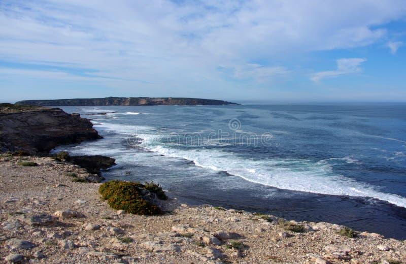 棺材海湾国家公园,巡回半岛 免版税库存图片