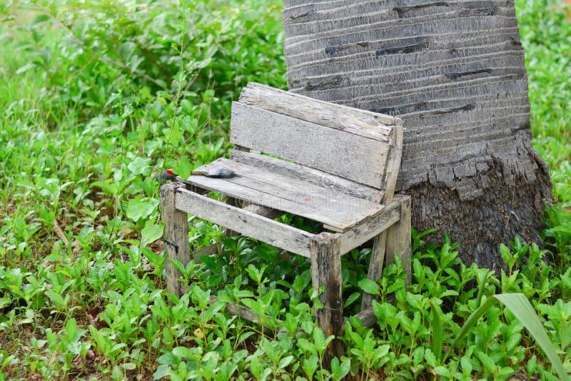 椅子公园在假日 库存照片