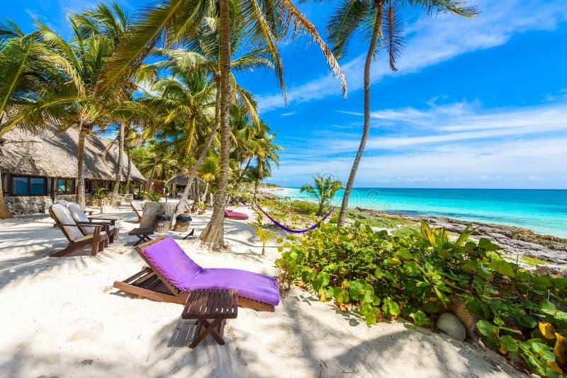 椅子和吊床在棕榈树下在天堂海滩在热带手段 里维埃拉玛雅人-在Tulum的加勒比海岸在安德烈斯 免版税库存照片