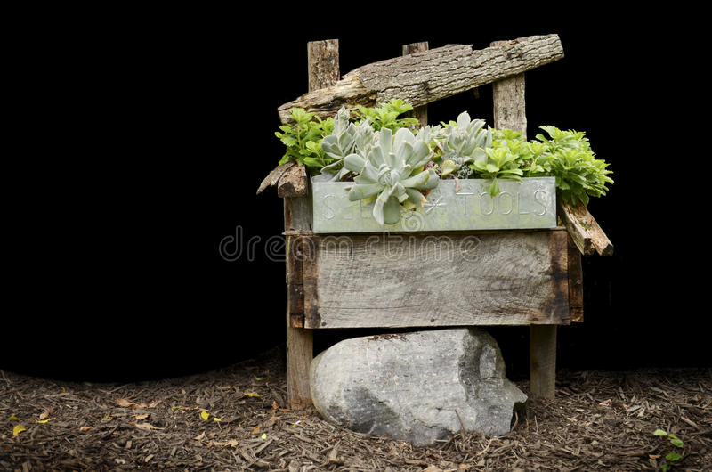 椅子种植木头 免版税库存照片
