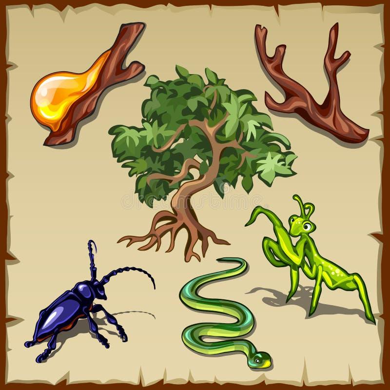 植物、昆虫和各种各样的其他生物 库存例证