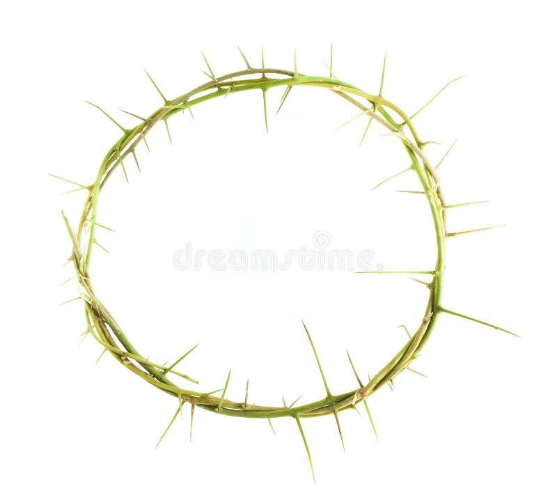 Download 植物分支的圈子与刺的 库存照片. 图片 包括有 宗教, 基督教, 灵性, 信念, 峰值, 基督徒, 符号 - 62526020