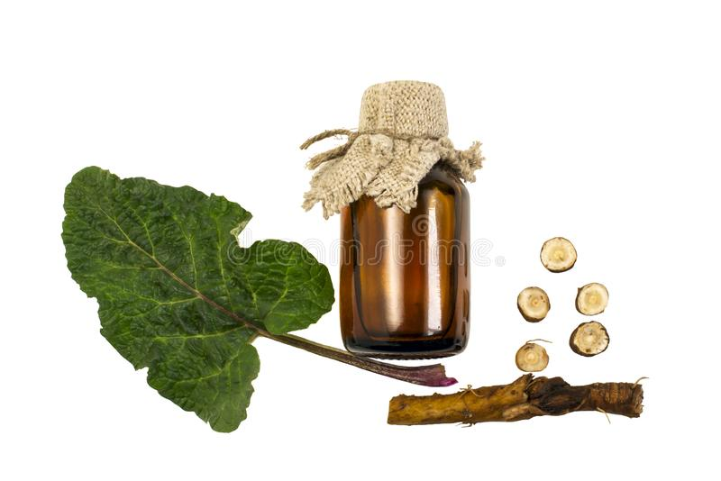 植物名牛蒡属lappa、叶子和根,在瓶的植物名油 免版税图库摄影