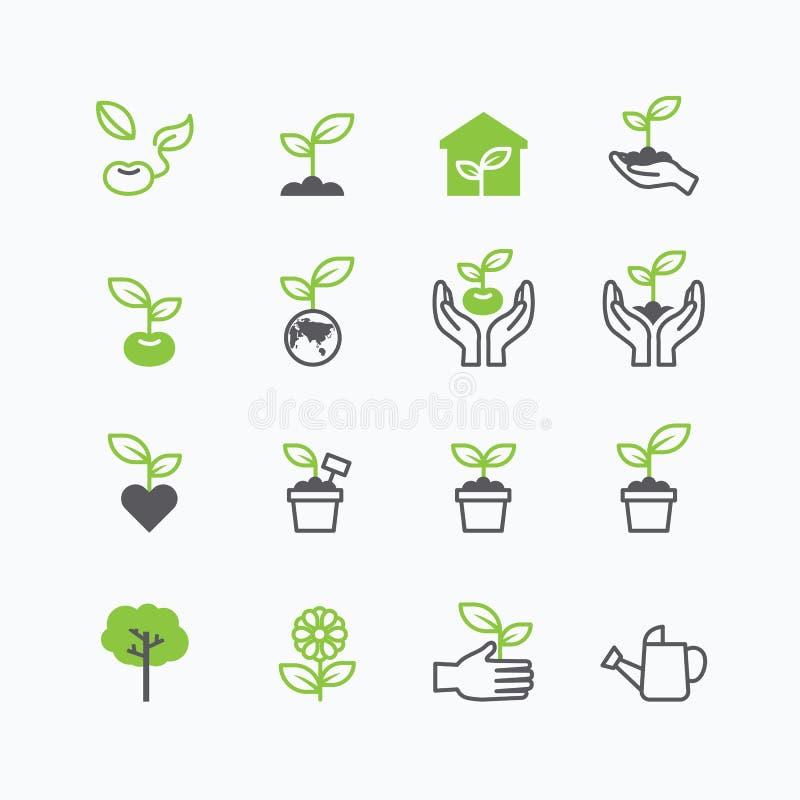 植物和新芽生长象平的线设计传染媒介 库存例证