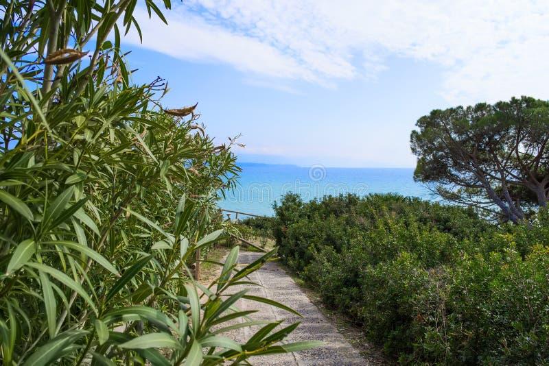 植物和步行道路在Le Bombarde靠岸 库存图片
