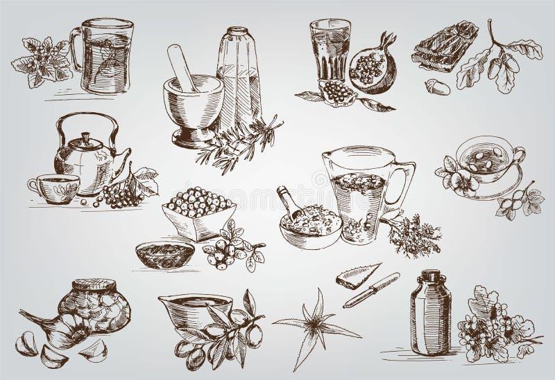 植物和草本在民间医学 皇族释放例证