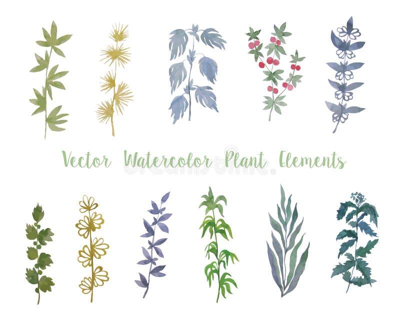 植物和草 皇族释放例证