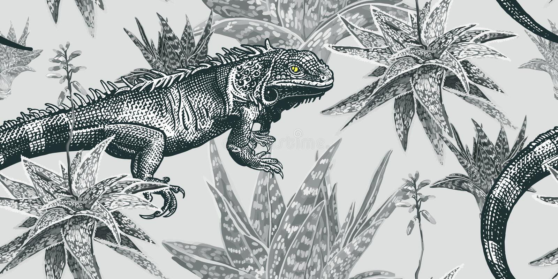 植物和蜥蜴 鬣鳞蜥和多汁植物 葡萄酒无缝的样式 皇族释放例证