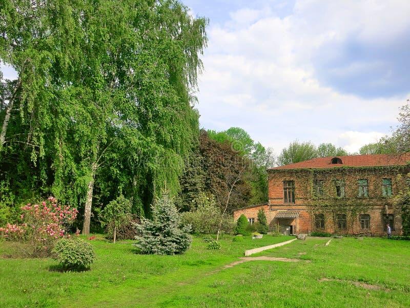 植物园在哈尔科夫在春天 免版税库存图片